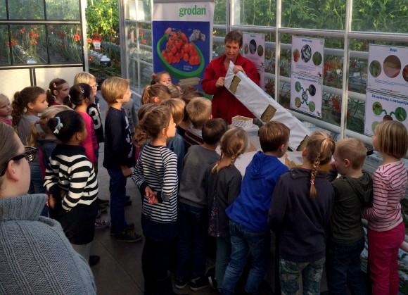 Tomatenkwekerij natuurlijktomaat.nl (Dongen)