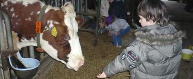 Melkveebedrijf De Scheerskamp (Hernen)