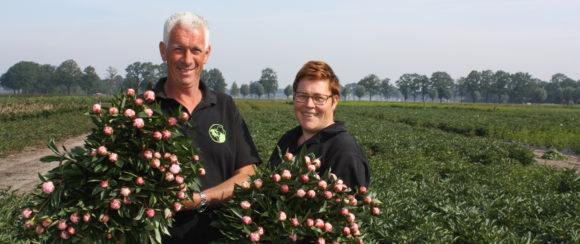 Bloemkwekerij van den Broek (Gemert)